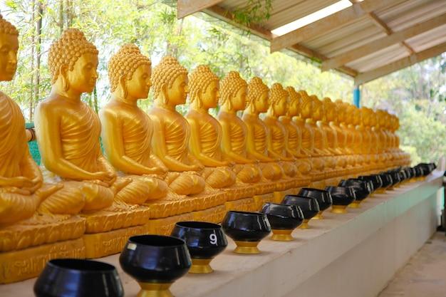 Linie der goldenen statuen von buddah in der phra phutta ming mongkol akenakiri in thailand in phuket.