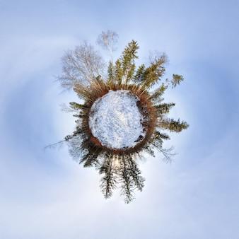 Little planet im wald mit blauem himmel Premium Fotos