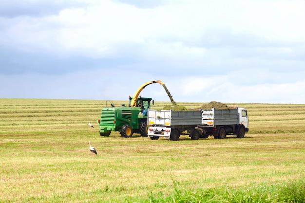 Lkw nimmt das korn