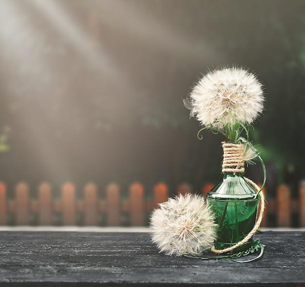 Löwenzahn in einer grünen flasche auf einem schwarzen holztisch