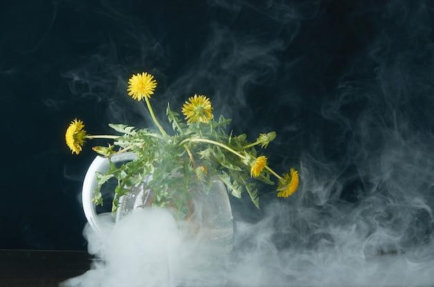 Löwenzahn mit wurzeln und blättern in einer glasteekanne auf einer dunkelheit im rauche