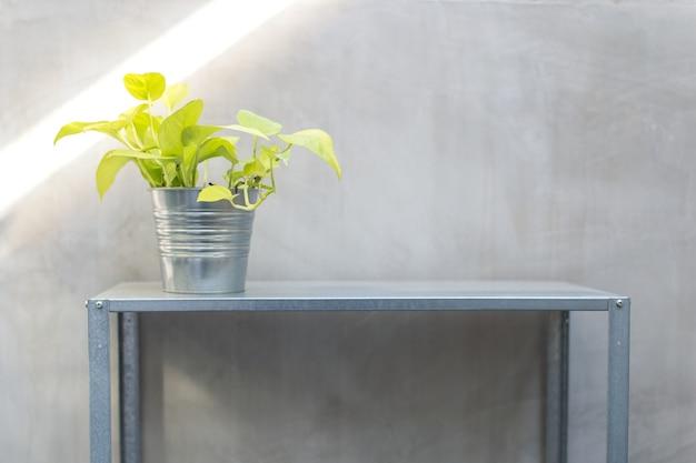 Loft stil zink topf und regal pflanzen mit wein oder pothos pflanze. idee für kleinen garten mit kleinen