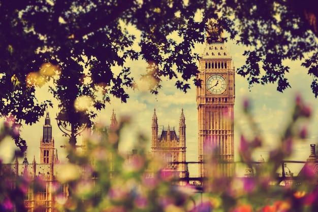 London blick durch einen baum