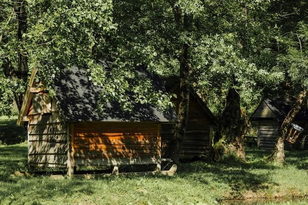 Long shot von bauernhofhallen unter bäumen
