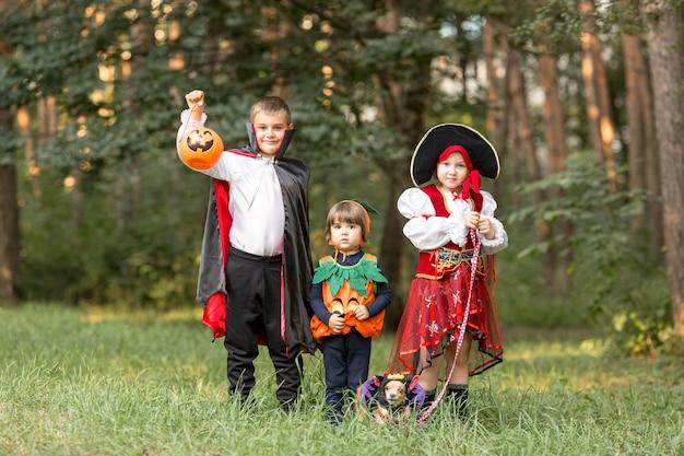 Long shot von kindern mit halloween-kostümen