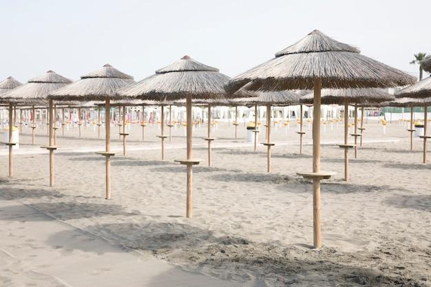 Long shot von palmenregenschirmen onin tropischen erholungsortstrand