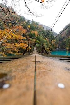 Low angle view shot fotografie landschaftsansicht hängende holzbrücke in der herbstlaubsaison und smaragdgrünes wasser mitten im tal in japan