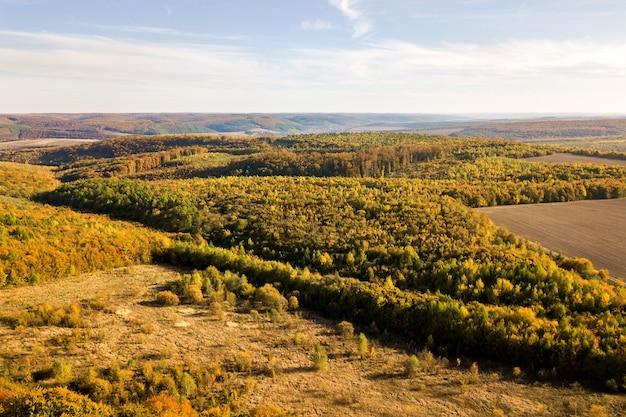 Luftansicht von oben nach unten von grünen und gelben vordächern im herbstwald mit vielen frischen bäumen.