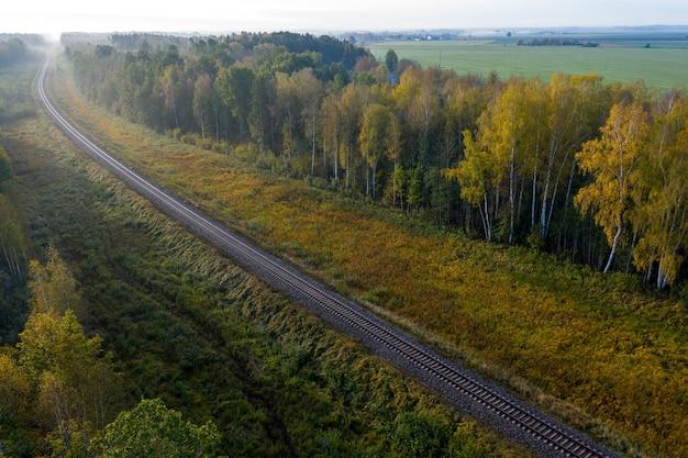 Luftaufnahme der eisenbahn im wald am nebligen herbstmorgen, draufsicht der ländlichen eisenbahn im herbst