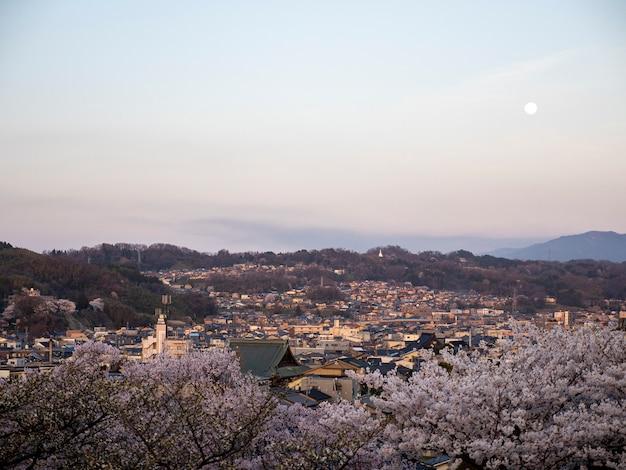 Luftaufnahme der kirschblüte in kanazawa stadt vom traditionellen japanischen kenrokuen-garten