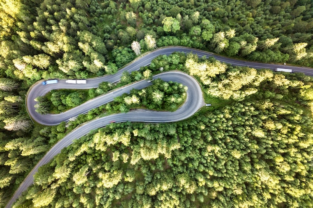 Luftaufnahme der kurvenreichen straße im hochgebirgspass durch dichte grüne kiefernwälder.