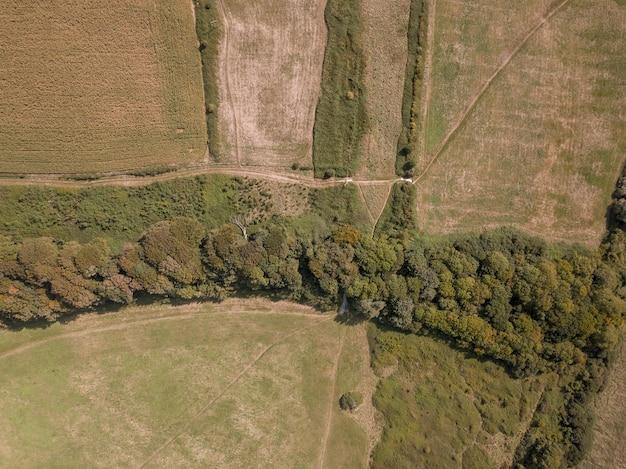 Luftaufnahme der landschaft nahe teddy bear woods, weymouth, dorset