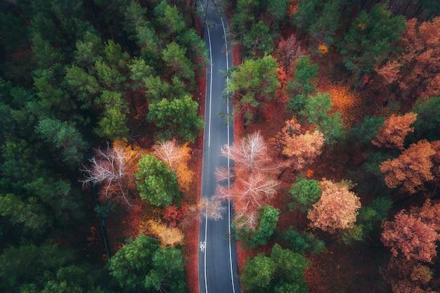 Luftaufnahme der straße im schönen herbstwald