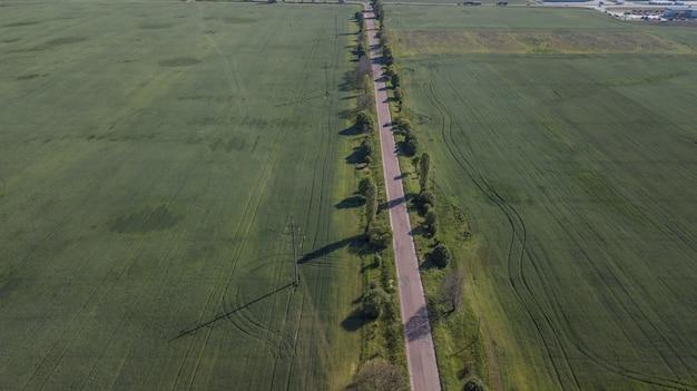 Luftaufnahme der verdrehung der straße unter dem wald und den bäumen.