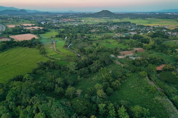 Luftaufnahme des ackerland- / reisfeldes in thailand