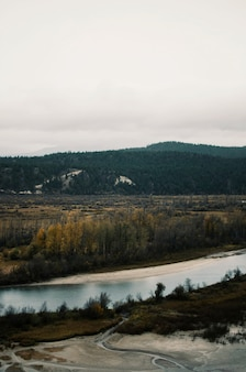 Luftaufnahme des braunen tals nahe des flusses unter dem grauen himmel