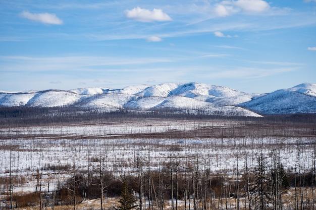 Luftaufnahme des flusses und der taiga-wälder und der straße in der abstrakten winterlandschaftslandschaft der nördlichen natur mit drohne