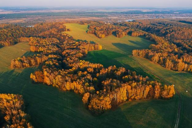 Luftaufnahme des herbstfeldes von oben. drohnenfotografie. herbst natur hintergrund. über wald fliegen. luftaufnahme von wiese und feld. landschaft mit straße. umweltschutz. drohnenflug