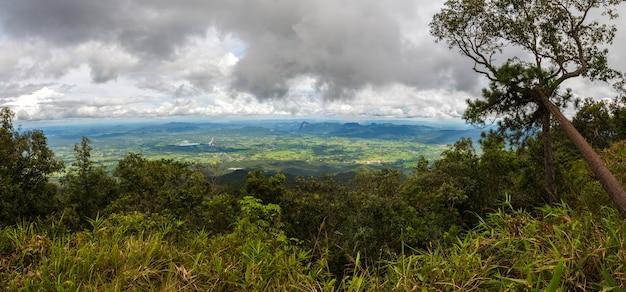 Luftaufnahme des regenwaldes in thailand