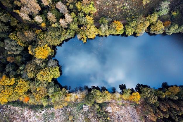 Luftaufnahme des schönen sees, umgeben von wald - ideal für tapeten