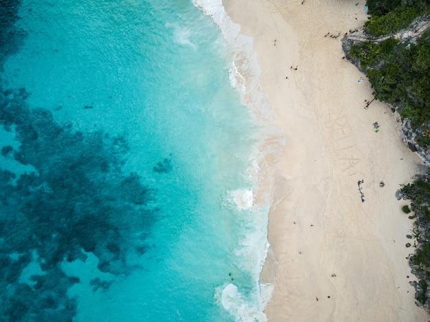 Luftaufnahme des strandes, umgeben von grün und meer