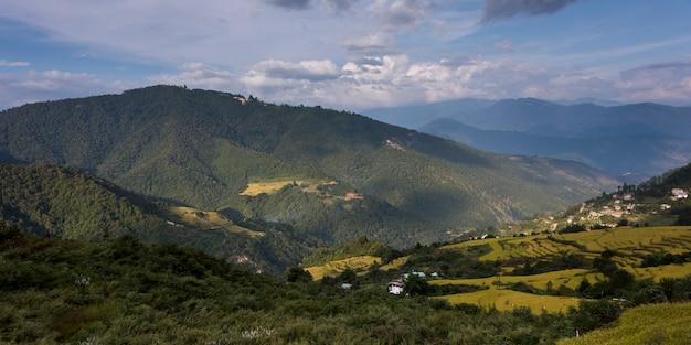 Luftaufnahme des terassenförmig angelegten feldes, thimphu, bhutan
