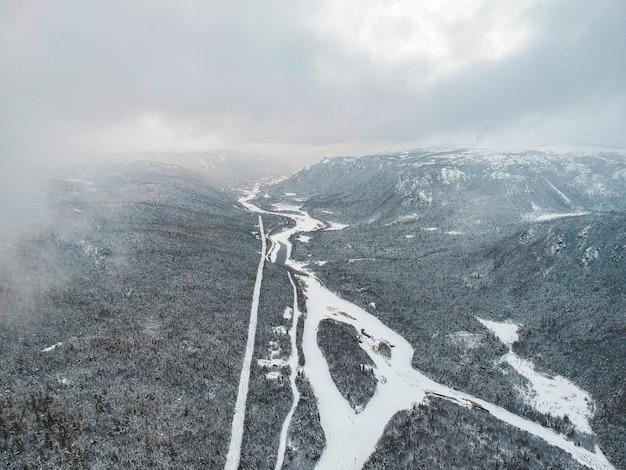 Luftaufnahme des waldes im winter