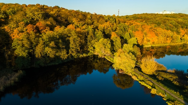 Luftaufnahme des waldes mit gelben bäumen und schöner seelandschaft von oben, kiew, goloseevo wald, ukraine