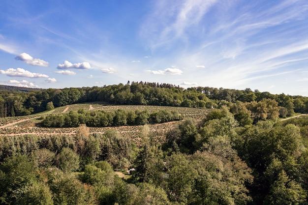 Luftaufnahme einer berglandschaft bedeckt mit bäumen