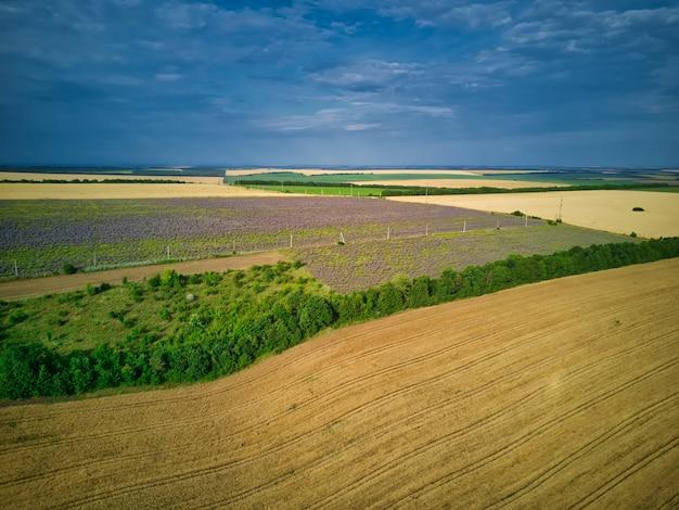Luftaufnahme einer landschaft mit lavendelfeld