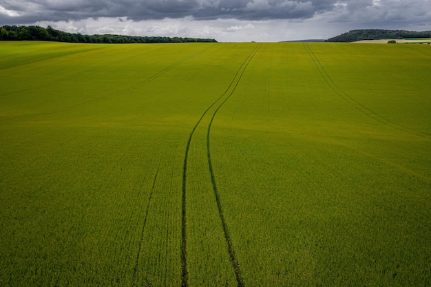 Luftaufnahme eines graslandes unter während eines bewölkten wetters