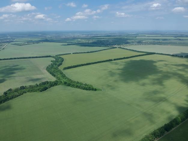 Luftaufnahme eines grünen ländlichen gebiets