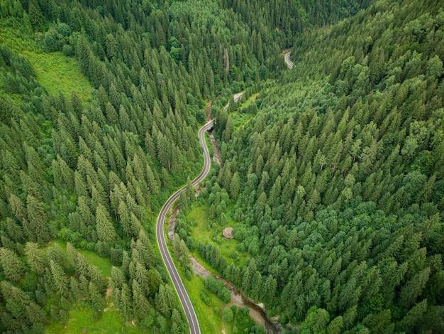 Luftaufnahme eines nadelwaldes, durch den eine kurvenreiche straße in den bergen führt