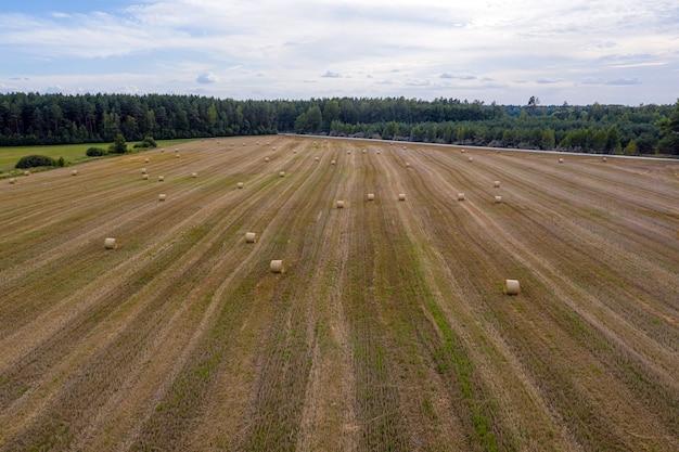 Luftaufnahme, ländliche landschaft mit landwirtschaftsfeld, wald- und heurollen