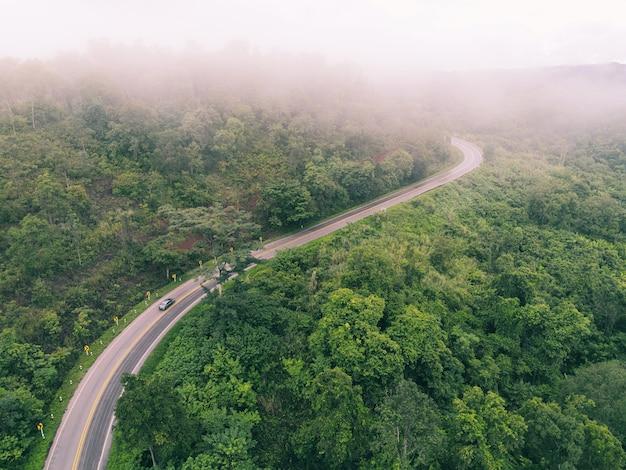 Luftaufnahme neblige straße waldbaum umwelt natur hintergrund, nebel auf grünem wald draufsicht neblige landschaft der hügel von oben, holzbaum straße kurve zum berg hintergrund