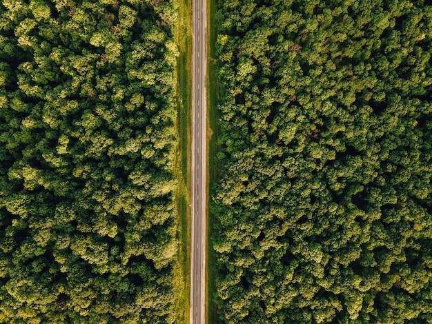 Luftaufnahme über waldland perfekte asphaltstraße und wiese am sonnigen sommermorgen in der nähe von grünen bäumen drohnenansicht wald sonnenuntergang luftbildszene