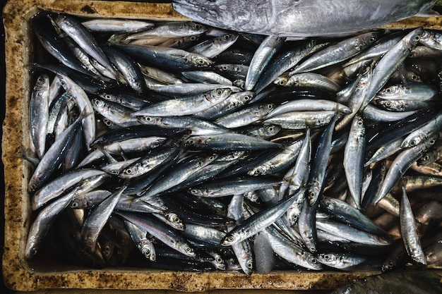 Luftaufnahme von fischen auf einem fischmarkt des frühen morgens