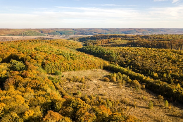 Luftaufnahme von oben nach unten von grünen und gelben überdachungen im herbstwald mit vielen frischen bäumen.