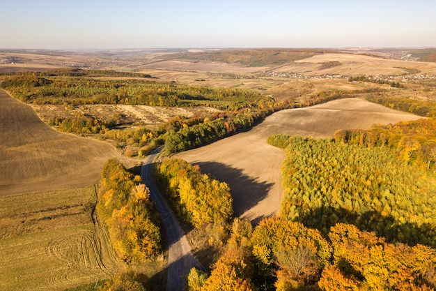 Luftaufnahme von oben nach unten von grünen und gelben vordächern im herbstwald mit vielen frischen bäumen