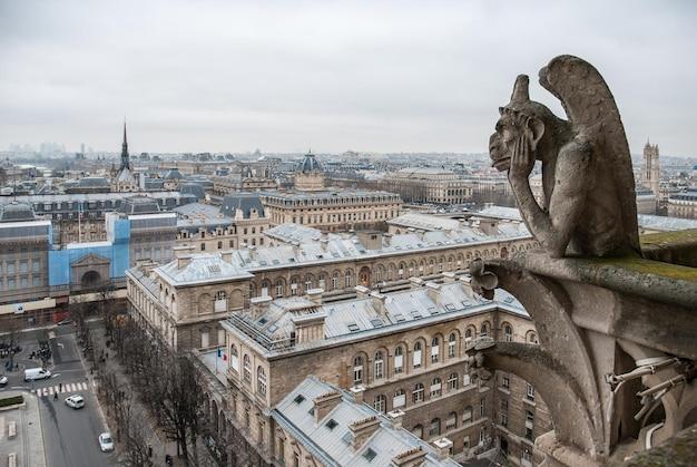 Luftaufnahme von paris - die wasserspeier von notre dame - paris, frankreich
