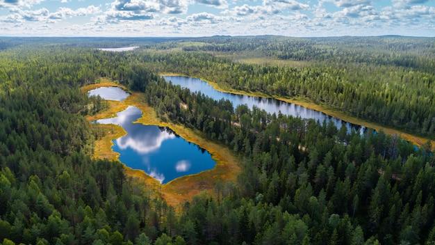 Luftaufnahme von wäldern und seen der karelienregion, russland