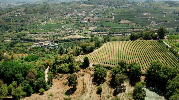 Luftaufnahme zur grünen ländlichen landschaft