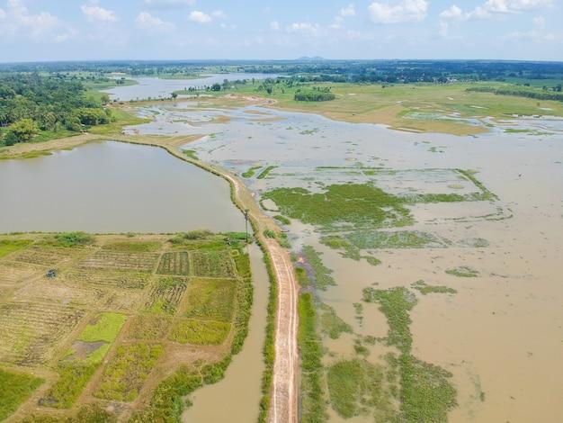 Luftbild auf einer straße in einem wald auf dem land.