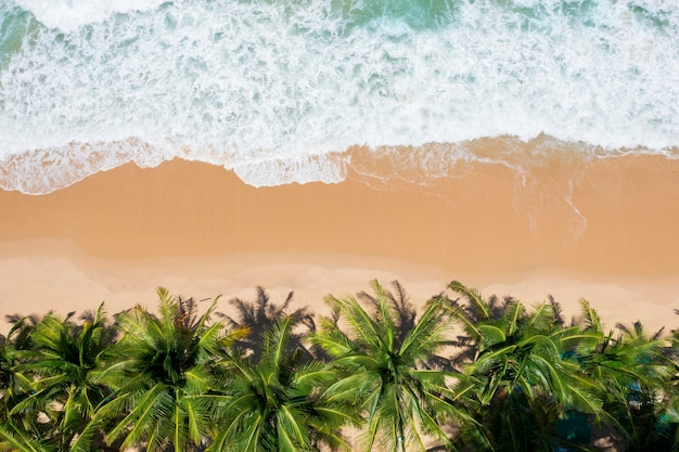 Luftbild-draufsicht schöner tropischer strand mit weißen sandkokospalmen und meer. ansicht von oben leerer und sauberer strand. wellen, die von oben auf den leeren strand stürzen. mit kopienraum.
