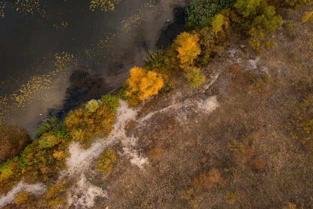 Luftbild drohne schoss ¡¡bunte herbstlandschaft