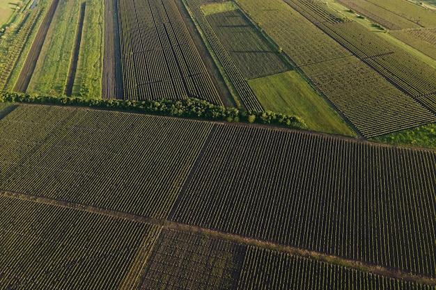 Luftbild landschaft schöne bauernhöfe und weinberge schönes video von drohne erstaunliche naturansicht a ...