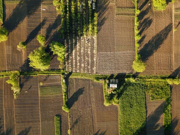 Luftbild landwirtschaftsfeld. sommertagslandschaft. mit der drohne über die wunderschöne ländliche landschaft fliegen