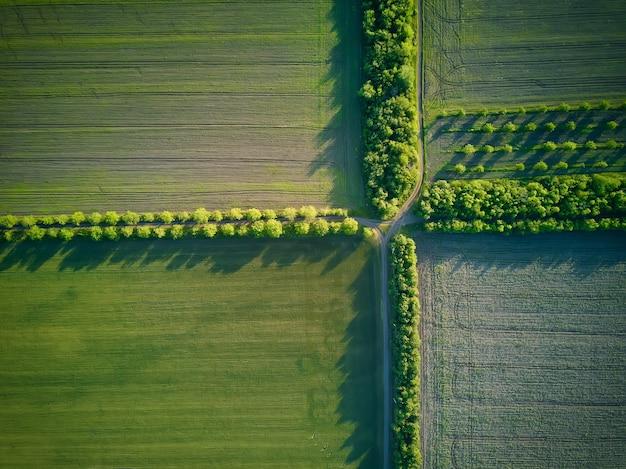 Luftbild über den landwirtschaftlichen feldern