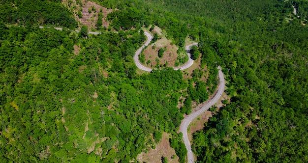 Luftbild von oben auf die kurvenfahrbahn durchqueren frischen grünen wald auf dem berg, straßenweg bergauf in der stadt