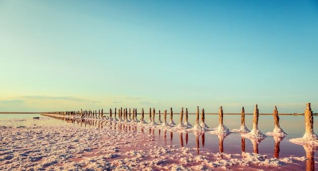 Luftbild von rosa see und sandstrand